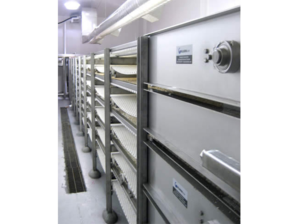 Multi-Tier Cooling and Drying Conveyors - Processing